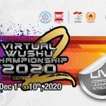 virtual wushu champion ship 2